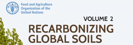 FAO_Recarbonizing